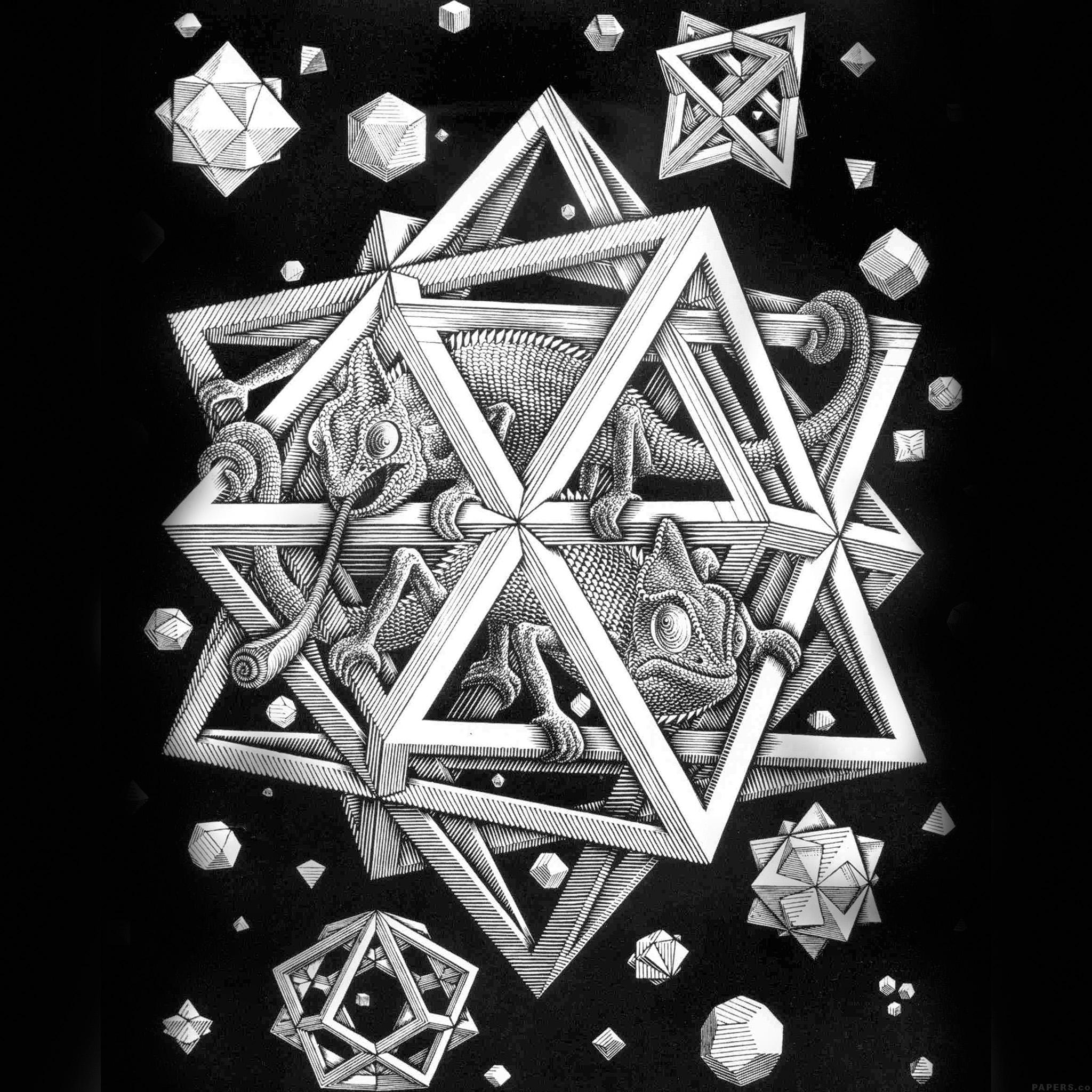 Optical Illusion Wallpaper Hd Ah71 Mc Escher Space Art Illust Lizard Bw Papers Co