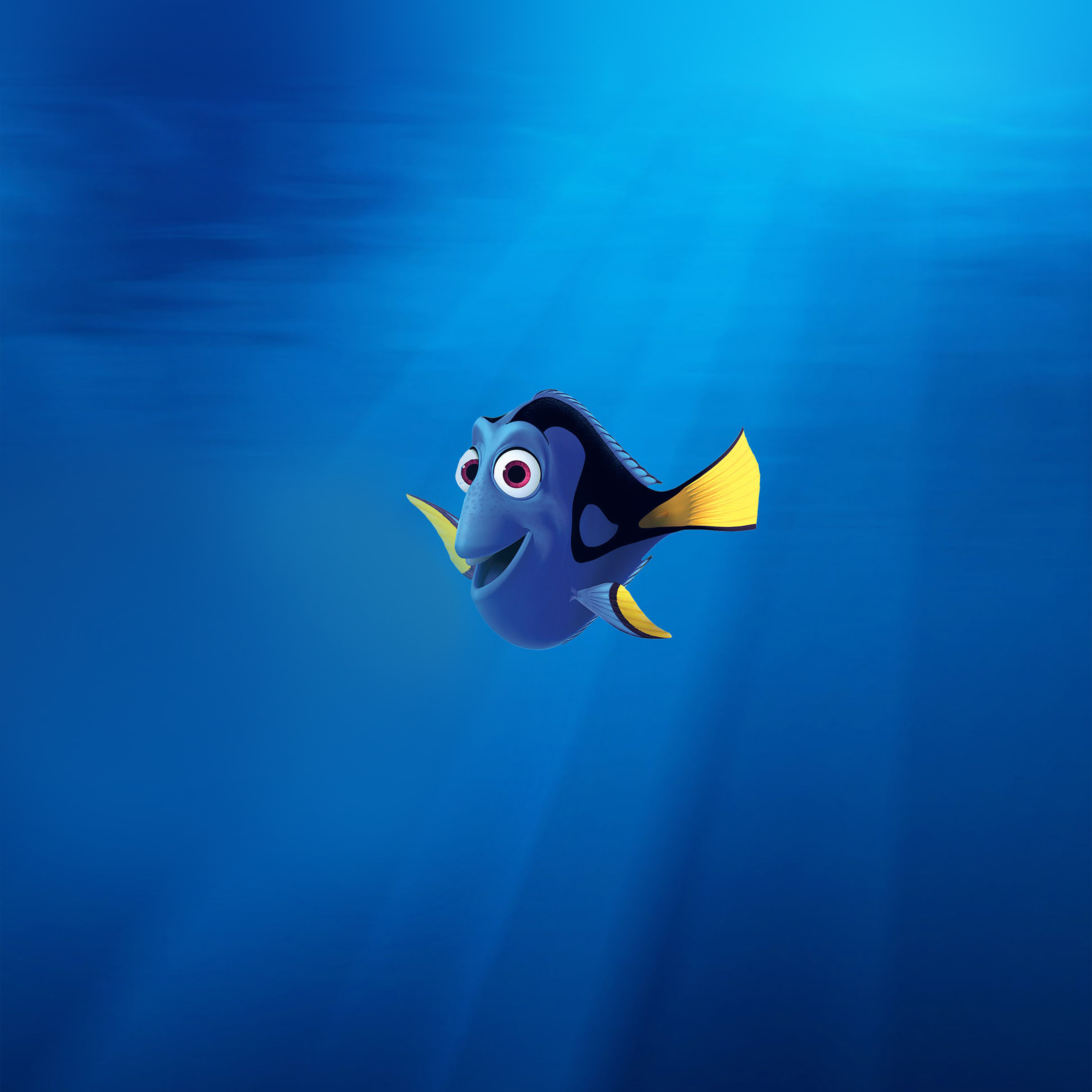 Cute Small Baby Wallpapers Aq99 Finding Nemo Dory Disney Art Wallpaper