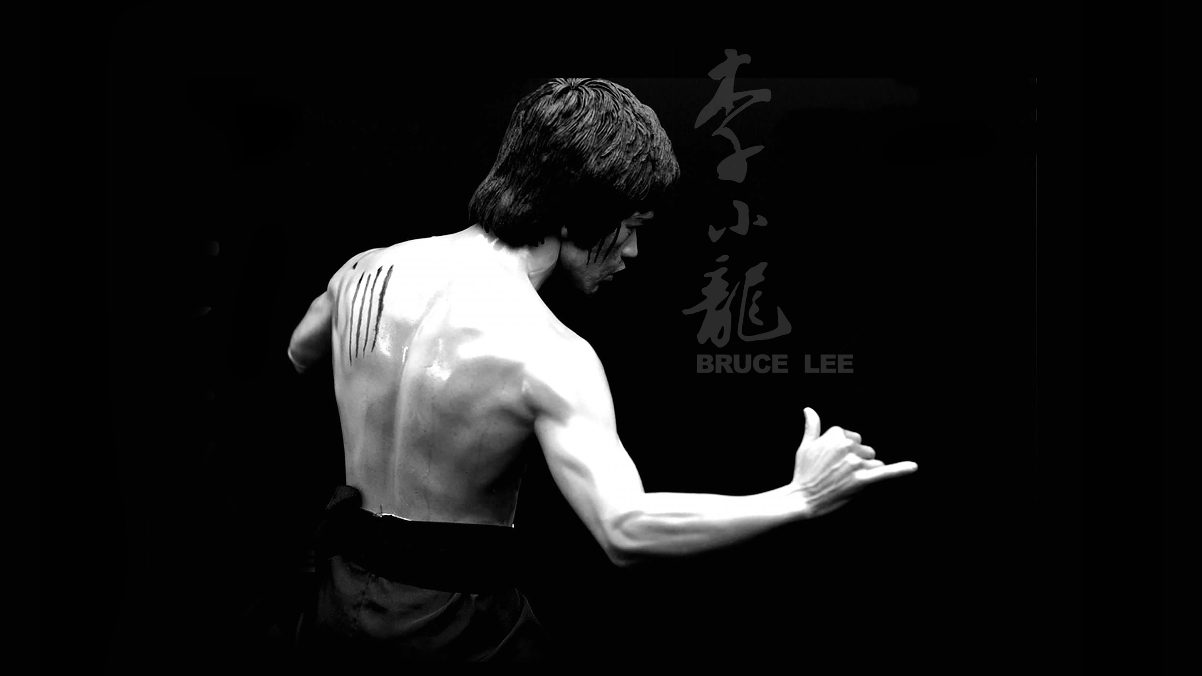 Fall Wallpaper Hd 1920x1080 Hd64 Bruce Lee Sports Actor Celebrity Dark Papers Co