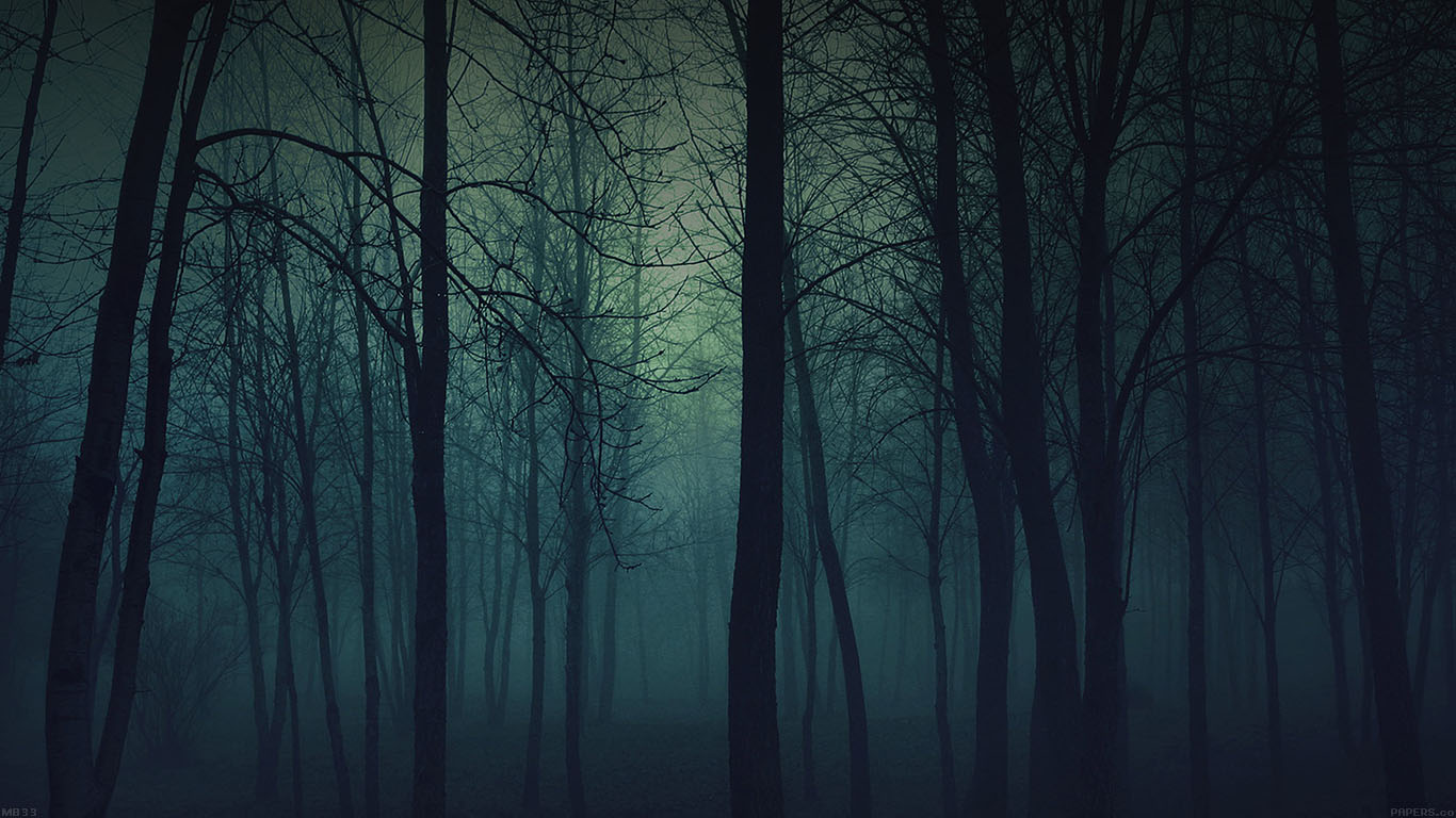 Creepy Cute Iphone Wallpaper Mb33 Wallpaper Foggy Forest Mountain Papers Co