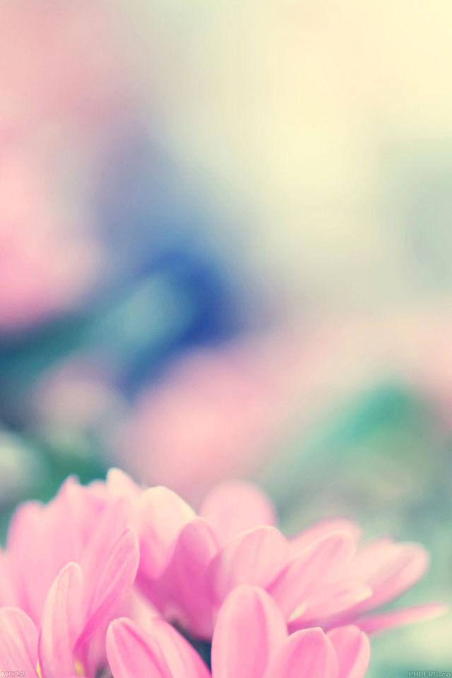 Pink Car Wallpaper Iphone Mc22 Wallpaper Boo 184 Flower Pink Blurred Papers Co