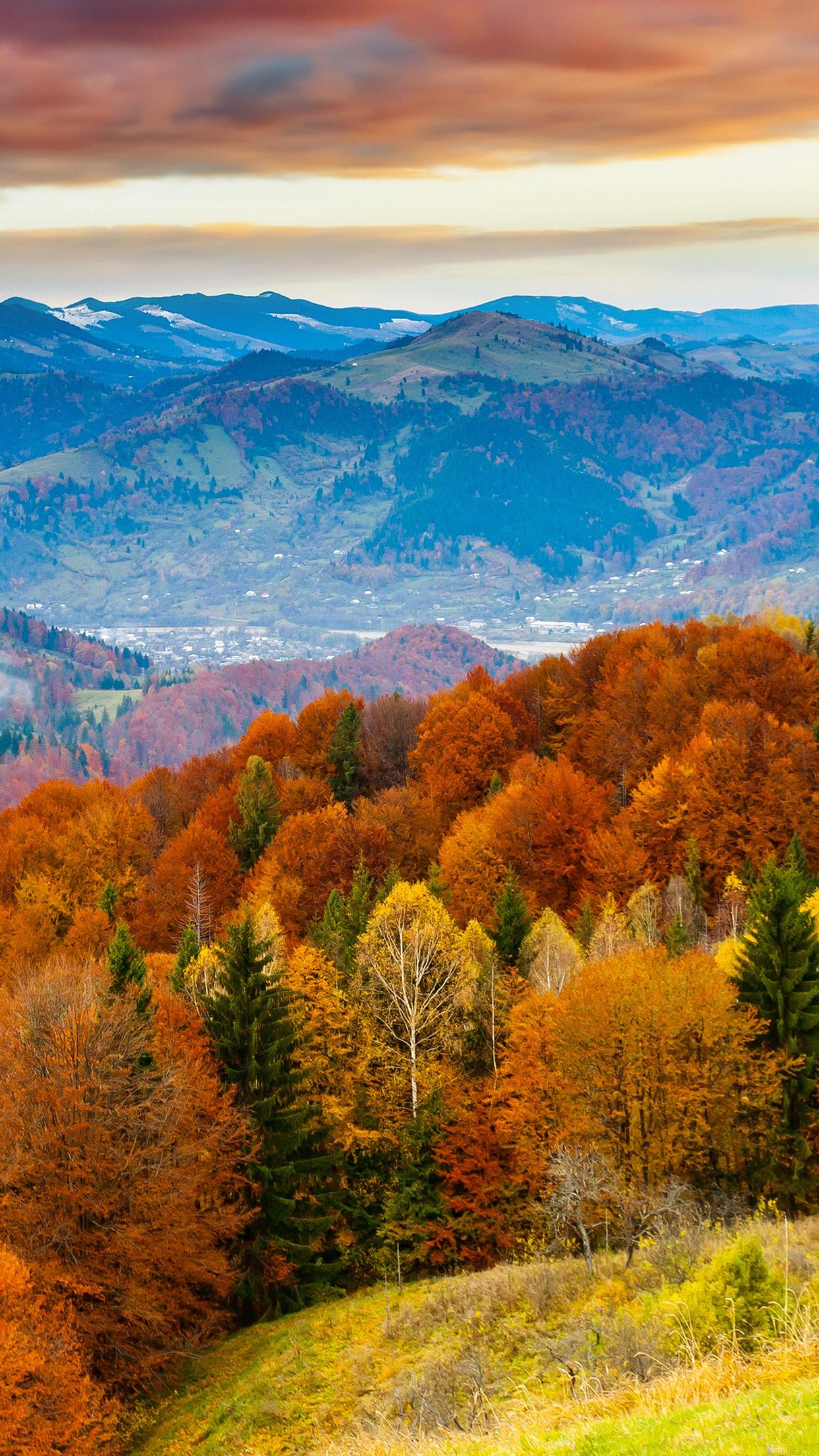 Fall Wallpaper Ipad Air 2 Iphone Se
