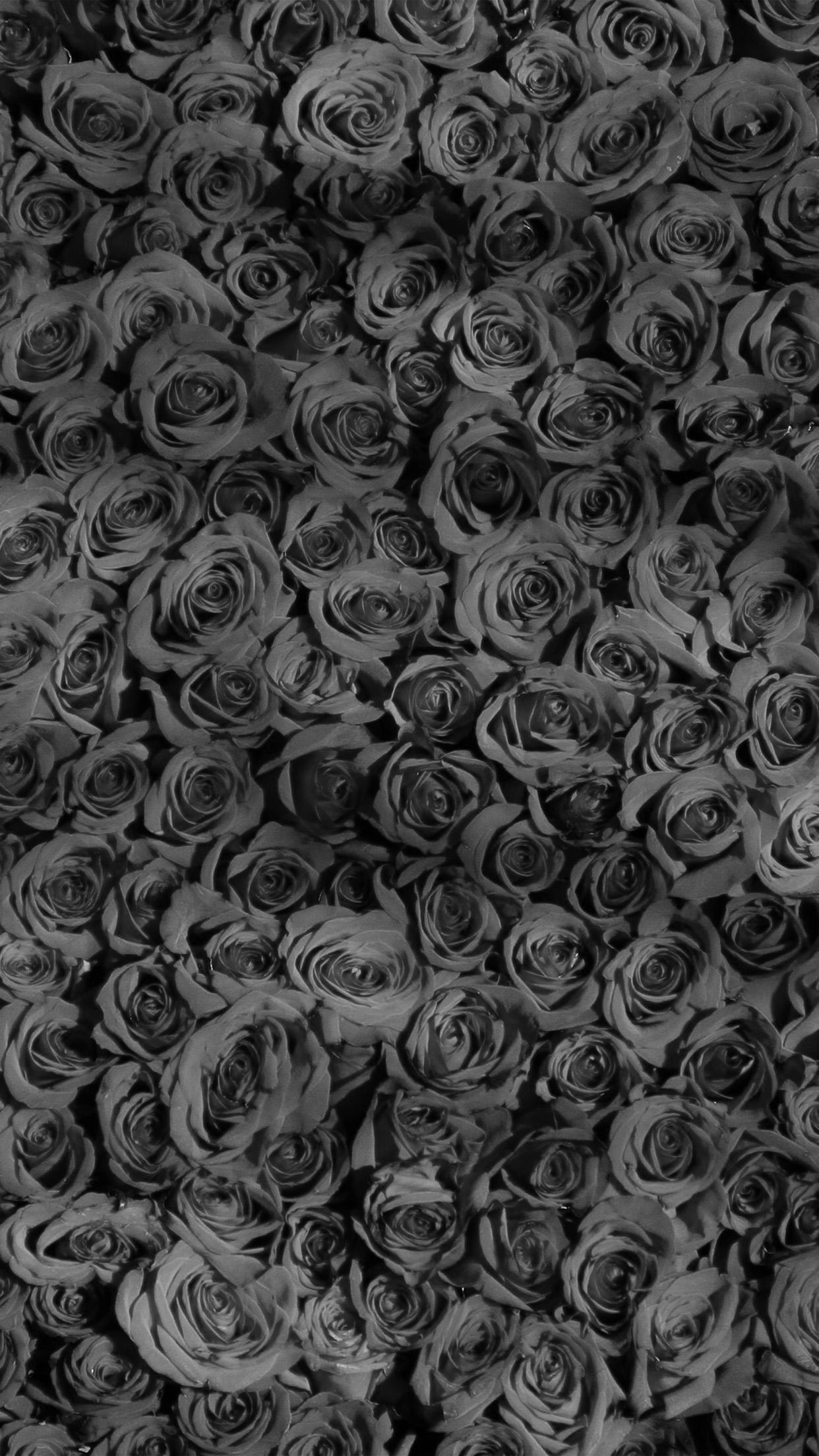 Ultra Hd Galaxy Wallpaper Vo45 Rose Dark Bw Pattern Wallpaper