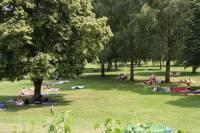 Stadt Pappenheim :: Freibad Pappenheim
