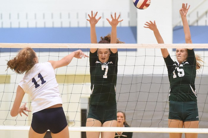 Shanahan tops Whippets, advances to district final