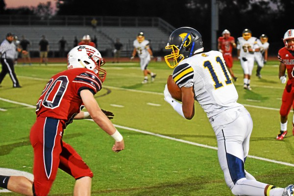 Marlyn Johnson has career night in Wissahickon's loss to PW