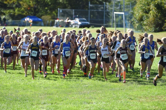 CHES-MONT CHAMPS: Shanahan's Hoey, Downingtown East's Devlin defend titles; Rustin runs to boys crown
