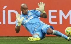 Ex-Campinense é campeão pelo Palmeiras
