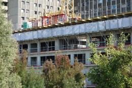 Terrasses entre les bâtiments B & C