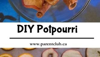 DIY Potpourri – easy and homemade potpourri!