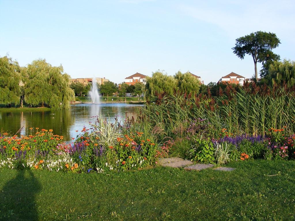 parc Jarry fontaine