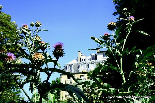 Cluny jardin médiéval 002