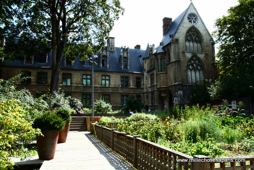 Cluny jardin médiéval 019