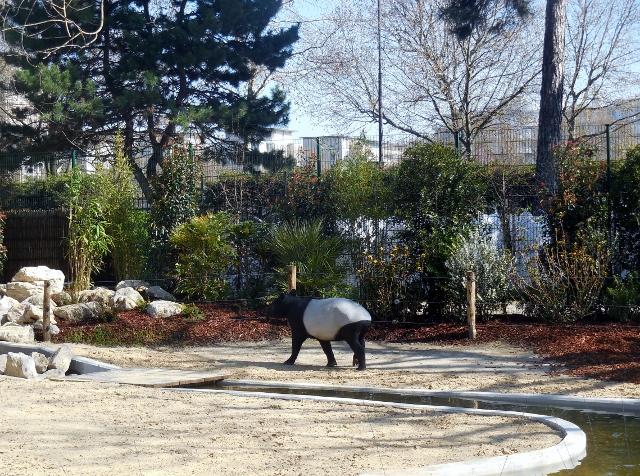 La m nagerie le zoo du jardin des plantes - Zoo du jardin des plantes tarifs ...