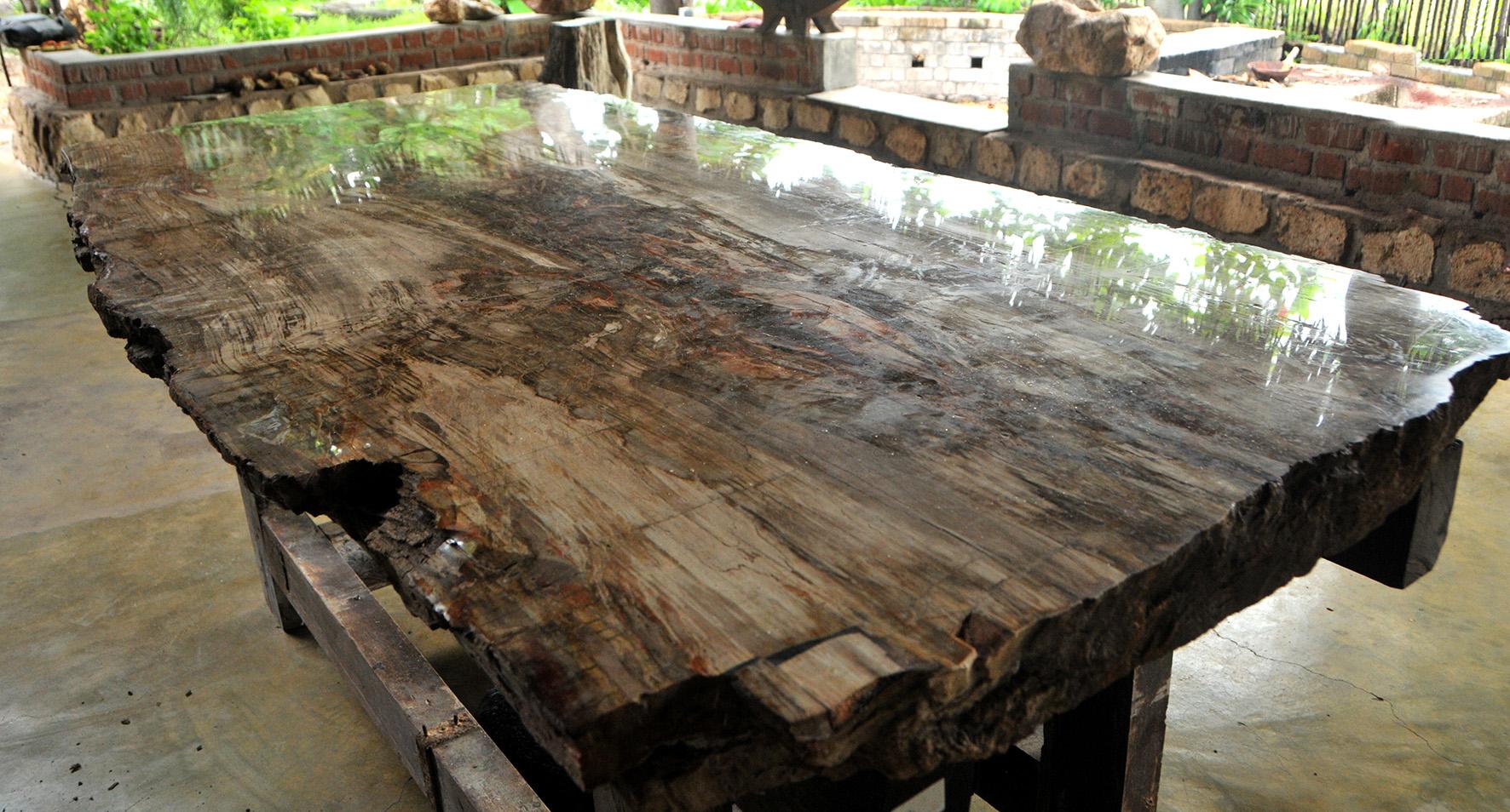 petrified wood table board download petrified wood table