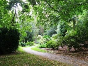 Charles U Botanical Garden path