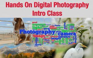 IntroPhotogClass_pARTiculars