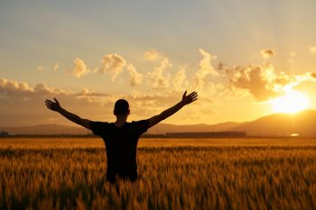 man with arms raised in wheat field posing in the sunset time with his arms raised.feeling complete.