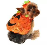 Sequin Pumpkin Dog Costume - Party City