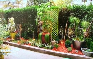 jardin parisien avec haie etouffante