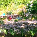 Un jardin exotique sur trois niveaux en climat océanique