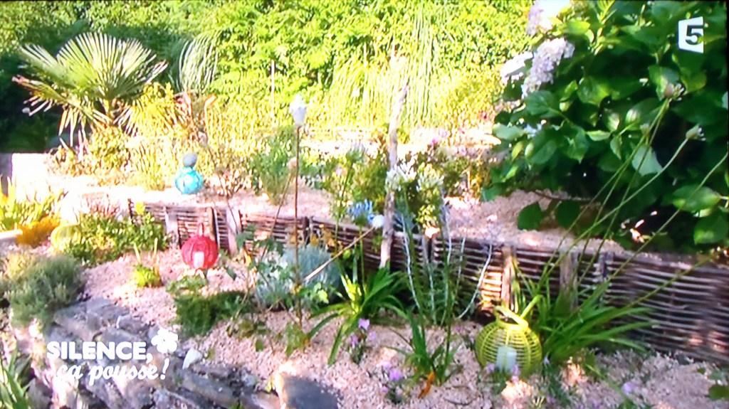 plan jardin exotique en espalier