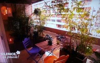 Bambou pas de panique d cryptage de l 39 mission for Terrasse exotique et depaysante