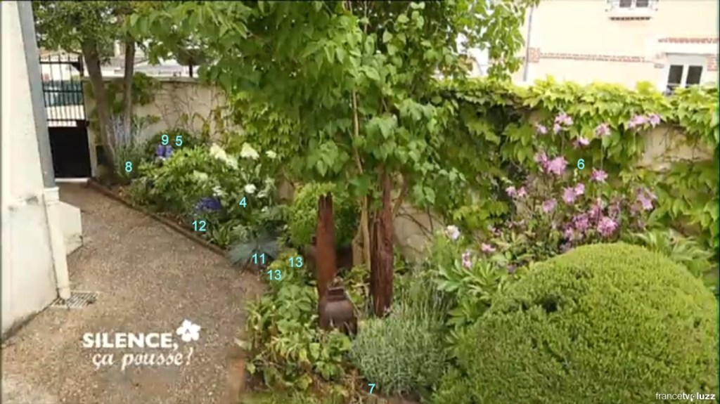 aménager massif entrée plantes