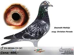 dv-06344-13-141-mini2