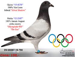 DV-08067-16-790 MINI