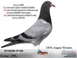 DV-09306-16-382 MINI
