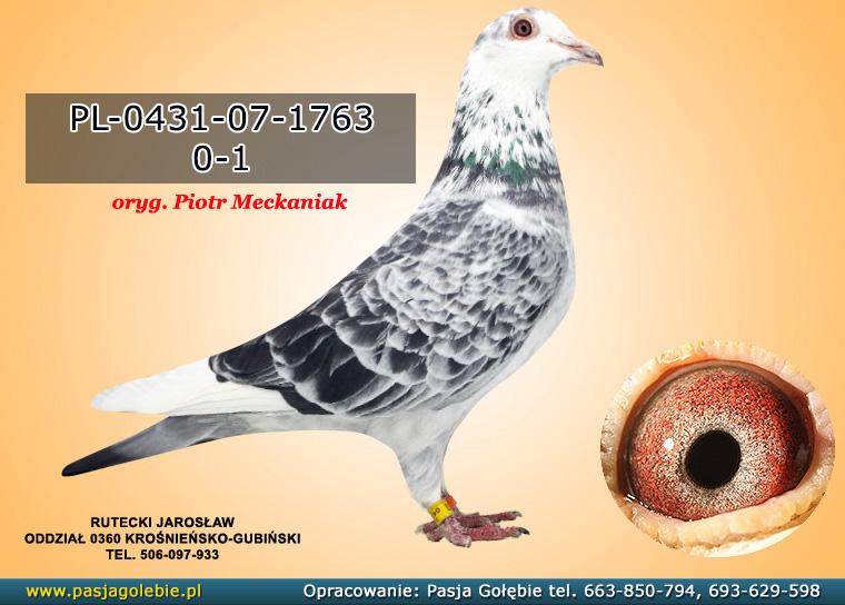 PL-0431-07-1763