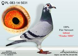 PL-083-14-5031 MINI