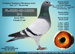 PL-0260-08-13333