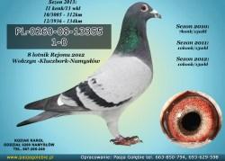 PL-0260-08-13355