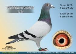 PL-0260-12-6936