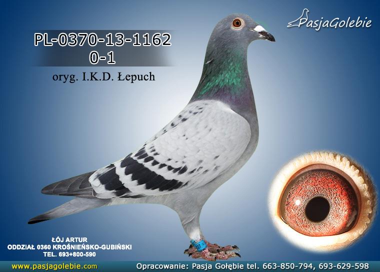 PL-0370-13-1162