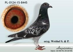 RODOWOD-PL-0124-15-8445