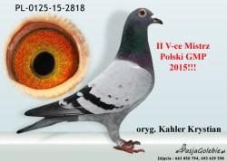 RODOWOD-PL-0125-15-2818