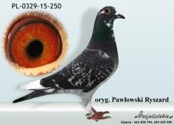 RODOWOD-PL-0329-15-250