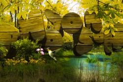 Photoshop 3D テキスト / Wood Effect