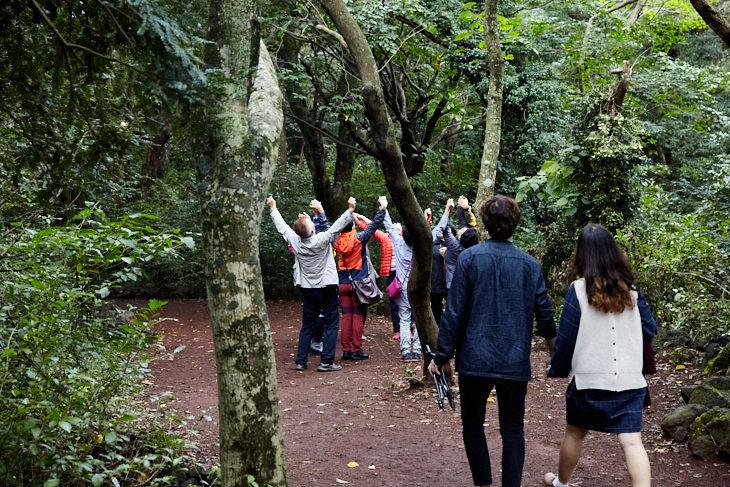 Passagem Gastronômica - Roteiro de Jeju - Bijarim Forest