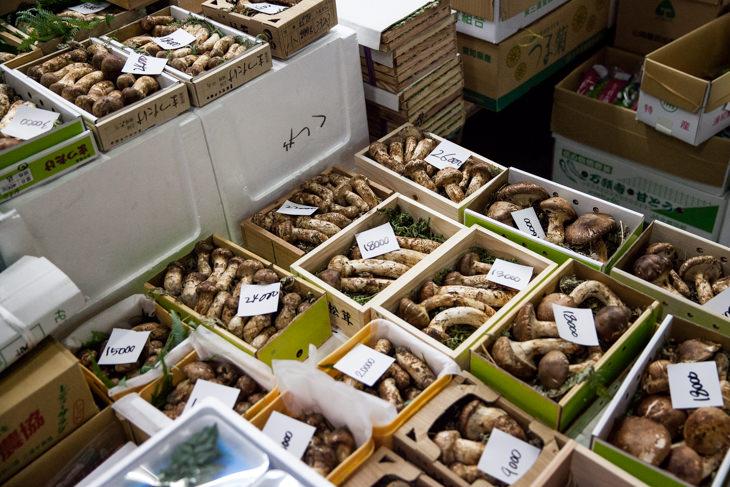 Passagem Gastronômica - Tsukiji Fish Market em Tokyo
