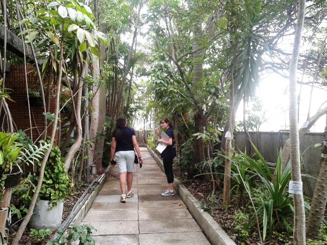 O jardim no topo do edifício surpreende os visitantes Foto: Patrícia Ribeiro/Passeios Baratos em SP
