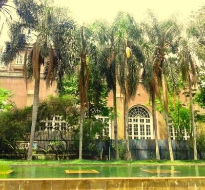 6 motivos para visitar o Parque Burle Marx, na zona sul de São Paulo