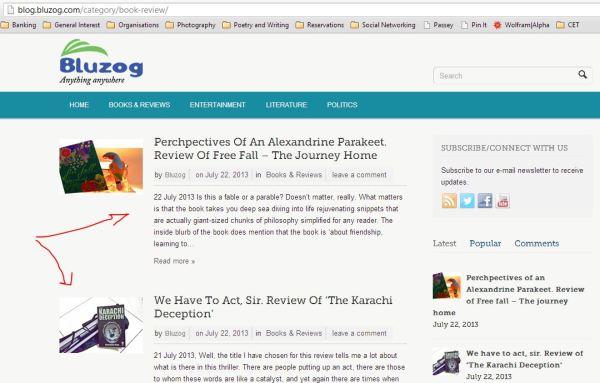 2013_07_04_Review on BLUZOG_Free Fall & Karachi Deception