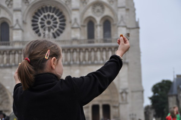 When I saw a sparrow perched on the little girl's extended hand, my focus shifted...