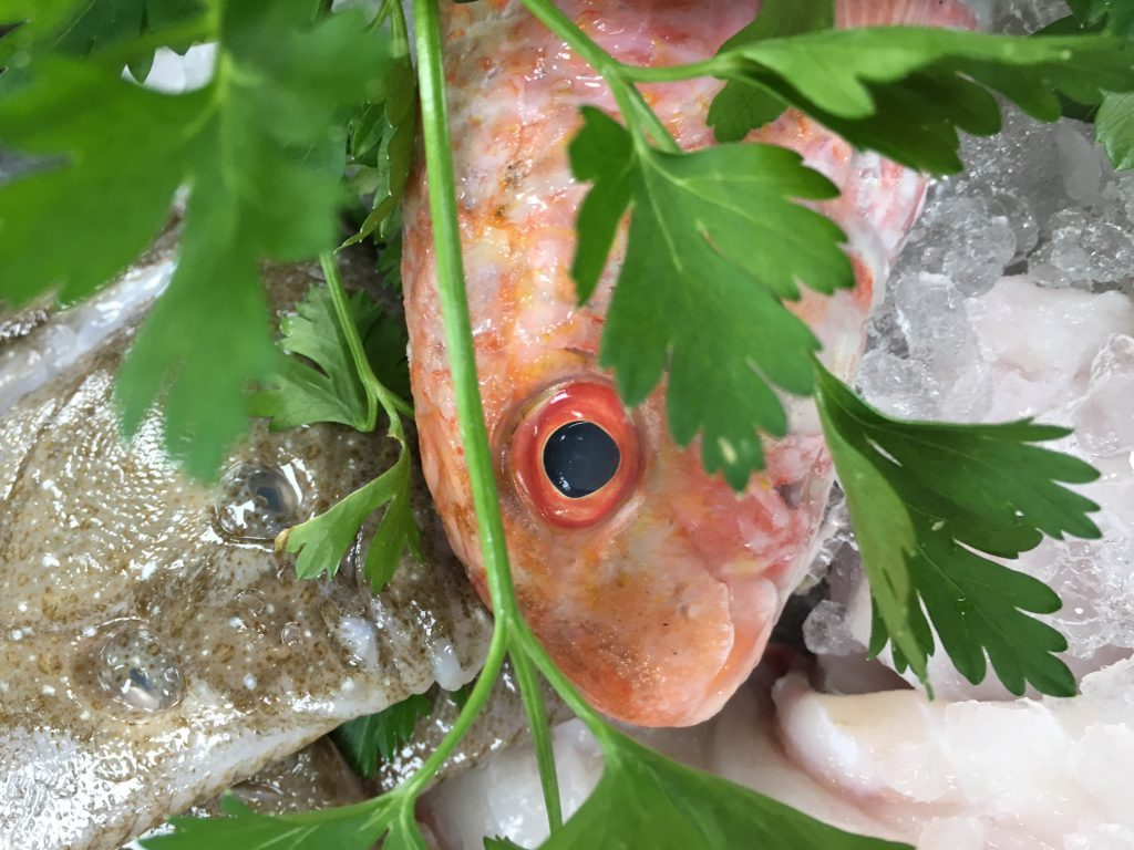 Say it with seafood passionate about fish the fish for Red mullet fish