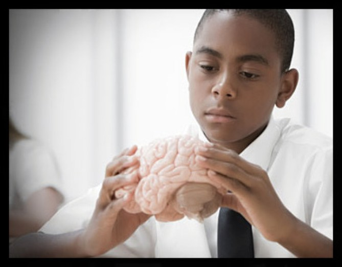 Boy with model of brain