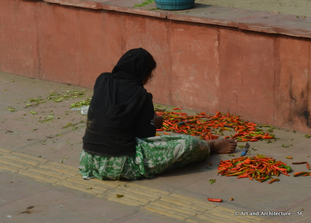 Pepper preparer Delhi India
